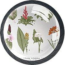 Pflanzen, 4er-Pack ABS-Harz Küchenschrank Knöpfe