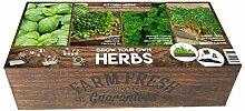 Pflanzen-Kölle Anzuchtkiste Farm Fresh, Kräuter,