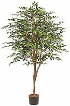 Pflanzen Kölle Kunstpflanze Ficus Benjamini mit