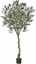 Pflanzen Kölle Kunstpflanze Olivenbaum mit