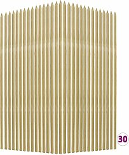 Pflanzen-Rankstäbe 30 Stk. 2,8×2,8×150 cm