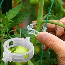 Pflanzenclip Kunststoff gebündelt Rattanclip