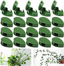 Pflanzenclips Kletterpflanzen Befestigung Clip