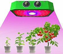 Pflanzenlampe , Led Grow Lampe Vollspektrum mit