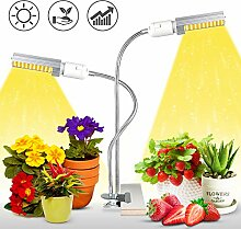 Pflanzenlampe LED KINGBO 50W,LED Grow Light Lampe
