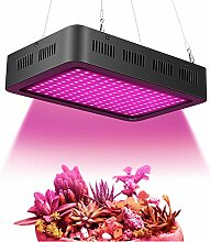 Pflanzenlampe Vollspektrum Led Grow Lampe, 1000W