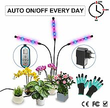 Pflanzenlampe, Wachsen Licht mit Zeitschaltuhr