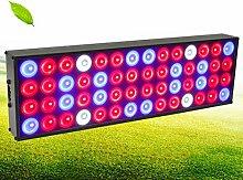 Pflanzenlicht, LED-Pflanze Grow Lampe, 56