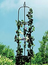 Pflanzenroller K, ant. anthrazi