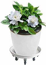Pflanzenroller, Metall Blumentopf Eimer