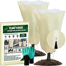 Pflanzenschutz, Frostschutz für den Winter, 59,5