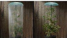 Pflanzenschutz-Set