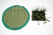Pflanzinsel inkl. 20 winterharten Teich-Pflanzen, rund, 80 cm – schwimmende Teichinsel mit Teichbepflanzung – Algen reduzieren in Koi-Teich durch Schwimmpflanzen auf Pflanzeninsel