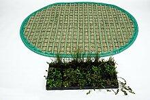 Pflanzinsel inkl. 36 winterharten Teich-Pflanzen, oval, 120 x 160 cm – schwimmende Teichinsel mit Teichbepflanzung – Algen reduzieren in Koi-Teich durch Schwimmpflanzen auf Pflanzeninsel