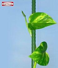 Pflanzstab grün 25 Stk. Länge 120 cm, Ø 11 mm 10020