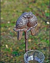 Pflanzstab Regenmesser Vögel