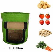 Pflanztasche, 2 Stück Pflanze Wachsende Tasche mit Tragegriffen, 10 Gallon/38 Liter Pflanzsack aus Vliesstoff für Gemüse, Tomaten, Kartoffeln, Karotten und Zwiebeln, Wiederverwendung für 5 Jahre - Grün