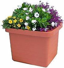 Pflanztrog Blumenkasten Bewässerungskasten