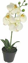 Phalaenopsis Orchidee im Topf weiß 35cm Nachtfalter-Orchidee Kunstpflanze Dekopflanze Heimdeko Foam Pflanze Dekoblume Kunstblume