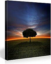 Picanova Mystical Tree On Field 80x80cm –