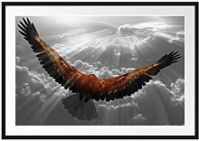 Picati anmutiger Adler über den Wolken