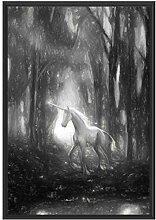 Picati Einhorn im Zauberwald im Schattenfugen