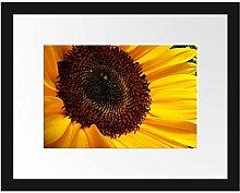 Picati große Sonnenblume Bilderrahmen mit