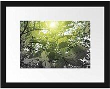 Picati Grüne Kastanienblätter Bilderrahmen mit