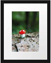 Picati Kleiner Fliegenpilz auf Baumstamm