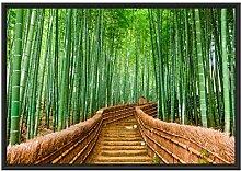Picati Kyoto Japan Bambuswald im Schattenfugen