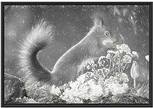 Picati Nagendes Eichhörnchen im Moos im