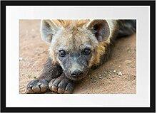 Picati niedliche Hyäne Bilderrahmen mit