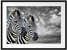Picati Zwei Zebras Bilderrahmen mit