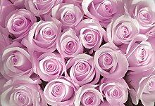 Pink Rose Flowers Wallpaper Mural