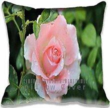 Pink Rose Pillow Case Sofa Waist Throw Cushion Cover Home D¨¦cor 18x18(2 Sides)