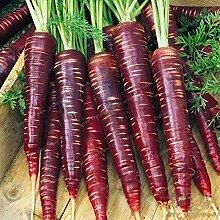 Pinkdose 100 Stück Gemüse, Obst, Bonsai lila
