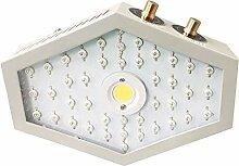 PINKE 1000W COB LED Wachsen Licht Vollspektrum