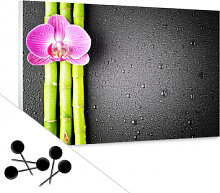 Pinnwände - Memoboard Orchid and Bamboo inkl. 5