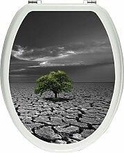 Pixxprint 3D_WCs_7259_32x40 einsamer Baum auf