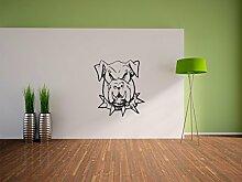 Pixxprint Böser Hund mit Halsband Wandaufkleber Dekoration für Wohn/Schlaf -und Kinderzimmer, 600 x 540 mm