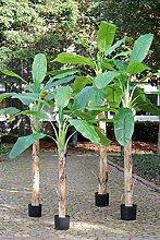PLANT&STYLE Künstlicher Bananenbaum, getopft,