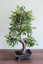 PLANT&STYLE Künstlicher Bonsai Ficus, getopft, 90