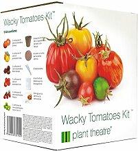 Plant Theatre Wacky Tomaten-Anzucht-Set - 6