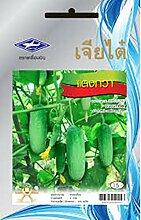 Plantree 1 pack: 55 samen gurke thai hausgarten