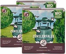 Plantura Zünslerfalle, 3er-Set, insektizidfreie