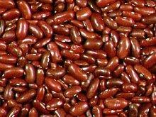 PLAT FIRM 1.2 Ounce Samen von VUD008 Dark Red