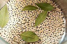 PLAT FIRM 30 Cannellini-Bohnen Samen Weiß