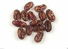 PLAT FIRM 50 Bio-Bean, Red Pole Kidney-Bohnen.
