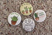 PLAT FIRM GERMINATIONSAMEN: Sukkulente Kaktus