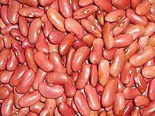 PLAT FIRM Kidney-Bohnen Samen: Light Red